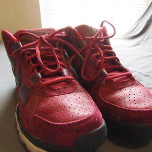Nike Air Trainer SC 2010 Premium Bo Knows Pack 13